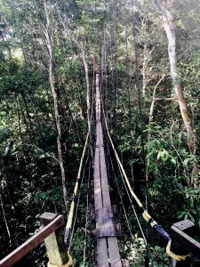 Tanimboca Nature Reserve - Colombia Remote Adventures